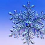 ws_Winter_Flake_1280x1024-1